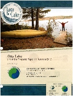 Love Your Lake Report Cover